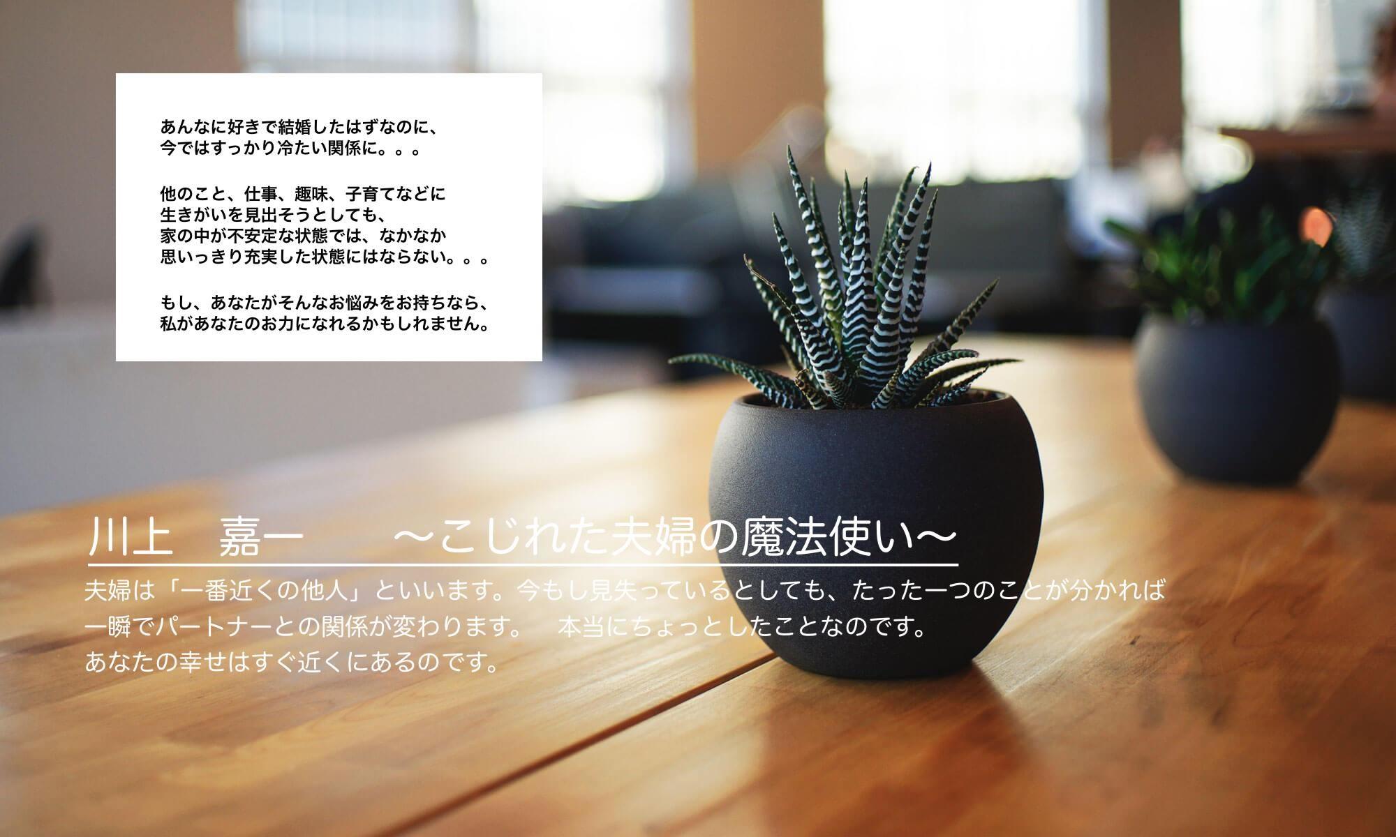 パートナーシップカウンセラー 川上 嘉一 ~こじれた夫婦の魔法使い~